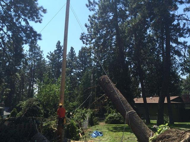 power pole damage Monday