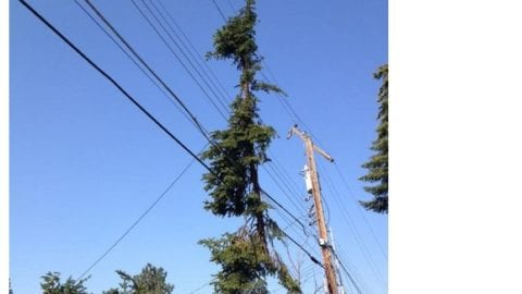 Comcast teams following after power crews in making repairs after Spokane storm