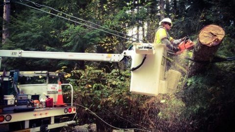 Storm Recovery Update from the Seattle-area Windstorm of Oct. 25-26