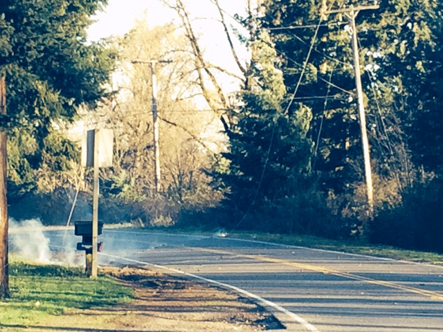 power line on fire in road