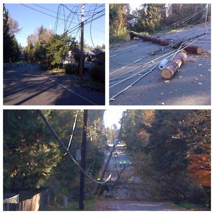 scenes of storm damage in Federal Way
