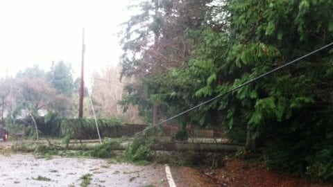 Storm update: Dec. 12, 2014