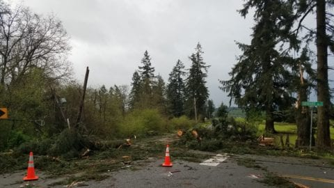 Storm Damage in the Olympia, Yelm, Tumwater Areas