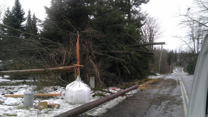 Storm Damage in Rural King County