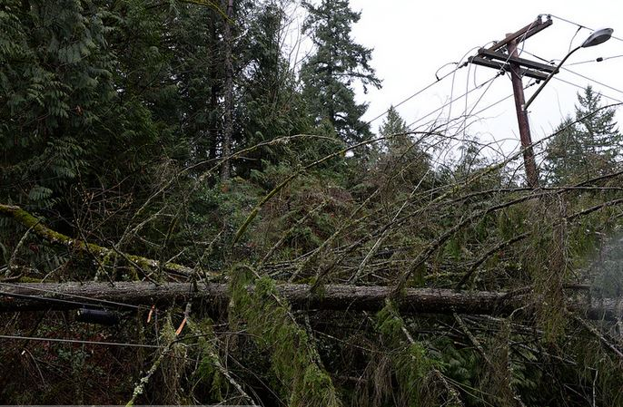 storm damage on lines