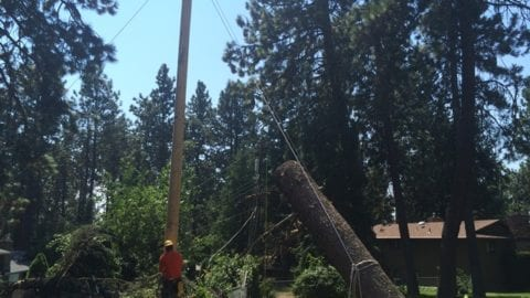 power pole damage Monday