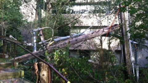 storm damage to a power pole