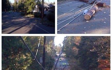 scenes of storm damage in Federal Way